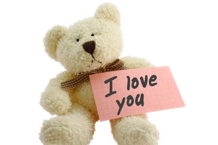 farewell: Front view of teddy bear toy with