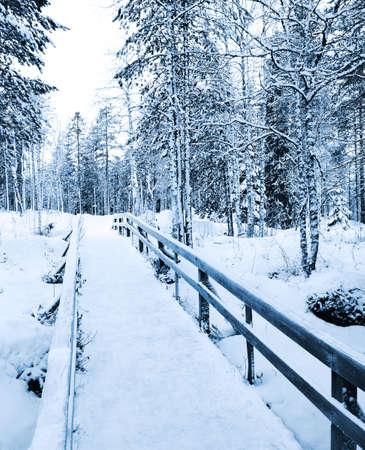 laponie: Chemin d'hiver - pont vers le d�sert, � Rovaniemi, en Laponie, en Finlande Banque d'images