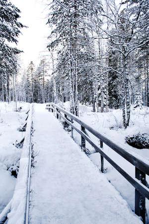 Winter path - bridge to the wilderness in Rovaniemi, Lapland, Finland photo