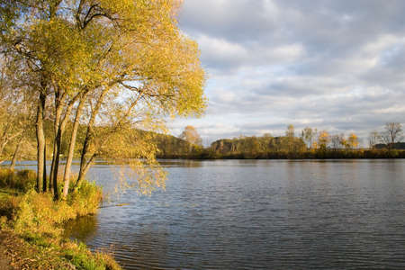 seasonality: Beautiful autumn landscape, yellow trees over water