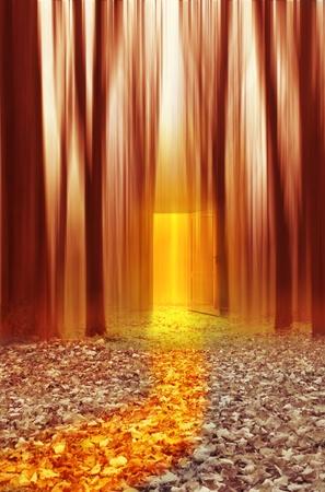 Magic way to light door
