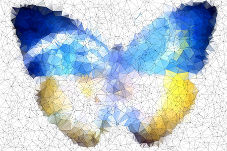 Ukraine butterfly vector geometric background with gradients, lines, different colors  Vector