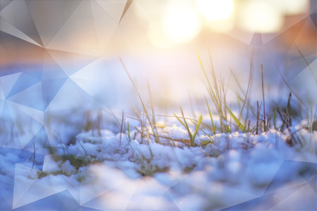 double exposure ice grass through snow winter macrophoto sun shines light