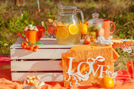 Decorated picnic with oranges and lemonade in the summer garden photo