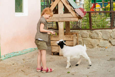 non urban 1: Little girl feeding the goat at the zoo