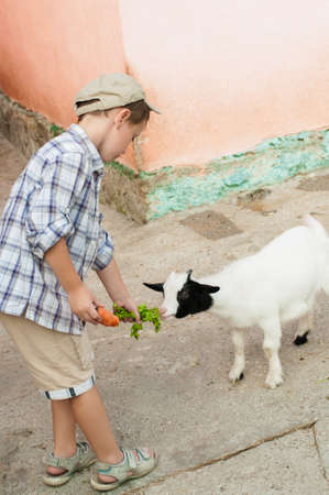 non urban 1: Little boy feeds a goat at the zoo