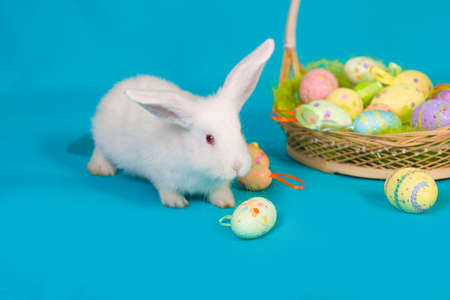 white Easter bunny with basket and colored eggs photo