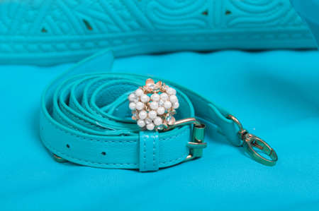 no heels: Beautiful ring of pearl and handbag on blue background