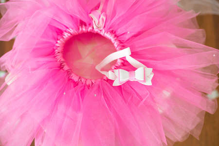 First birthday. Pink skirt-tutu, crown, and balloons and flowers decorated party