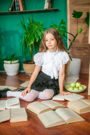 A school board and apples. School fashion Foto de archivo