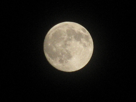 volle maan: