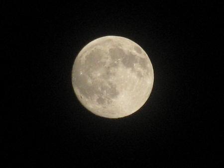 noche y luna: Una luna llena el d�a de oto�o Vectores