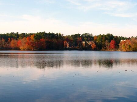 A picture of the autumn of the city with colorful trees and a lake Vector