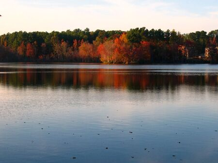 birds lake: A picture of the autumn of the city with colorful trees and a lake