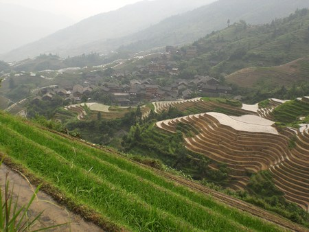country side: Terraced fields on the mountains of the city of Longji in Guangxi