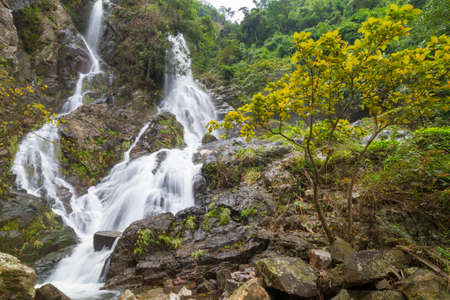 The waterfall in the deep forest of Thailand  photo