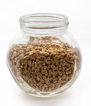 tare: Wheat grain in the glass tare
