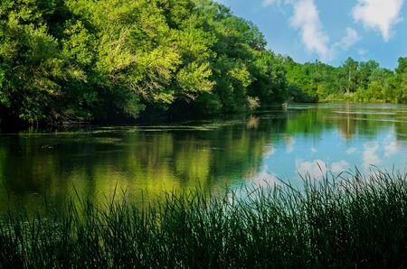 chalky: Chalky flora reservation in Slavyansk Ukraine