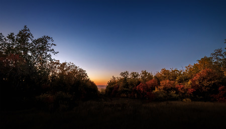 Dawn in the autumn forest Europe