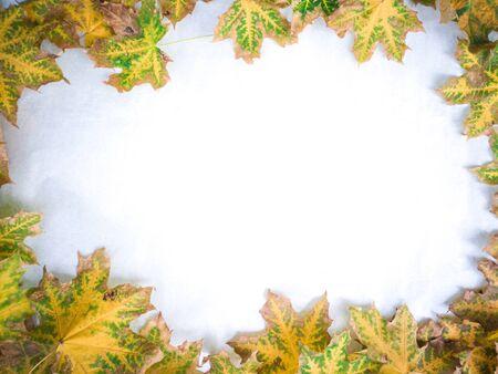 Maple leafes full site frame