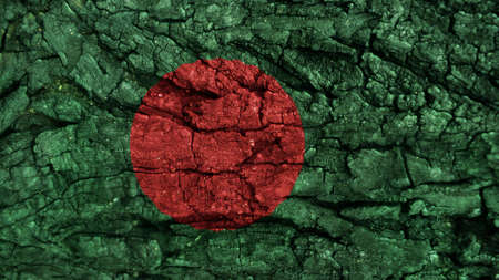 rough: Bangladesh Flag rough texture