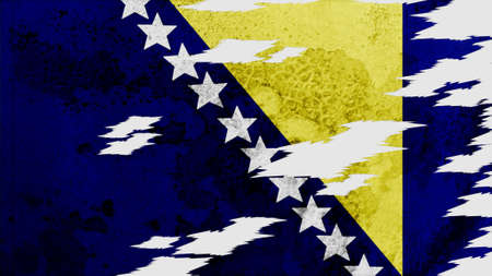 lacerate: bosnia and herzegovina Flag lacerate texture