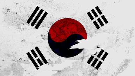 lacerate: Korea South flag lacerate texture