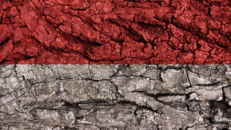 clime: indonesia Flag rough texture Stock Photo