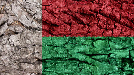 clime: madagascar Flag rough texture