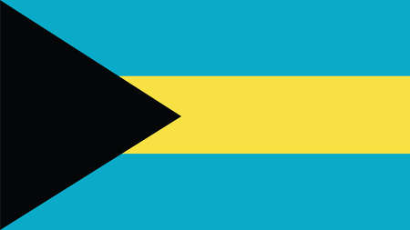 bahamas celebration: bahamas Flag for Independence Day and infographic Vector illustration.