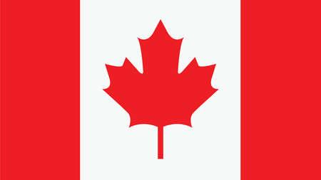 bandera blanca: La bandera de Canadá para el Día de la Independencia y la ilustración vectorial infografía.