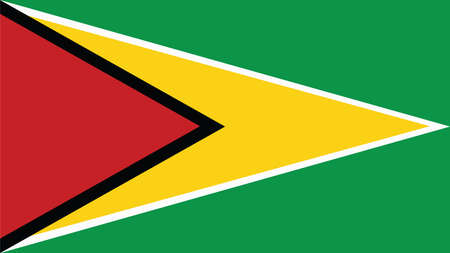 guyana: guyana Flag for Independence Day and infographic Vector illustration. Illustration