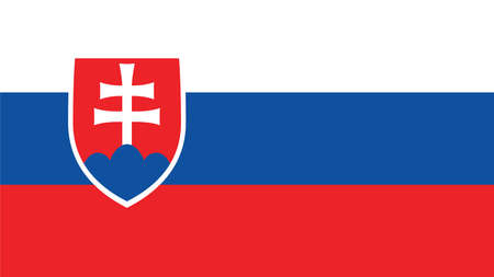 slovakia flag: Slovakia  Flag for Independence Day and infographic Vector illustration. Illustration