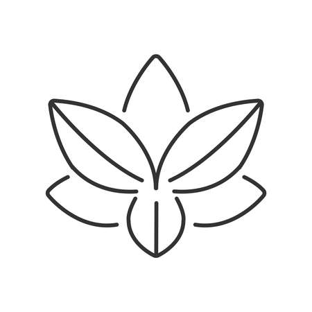 abstract symbolism: Line Icon Style,  lotus icon vector design eps10