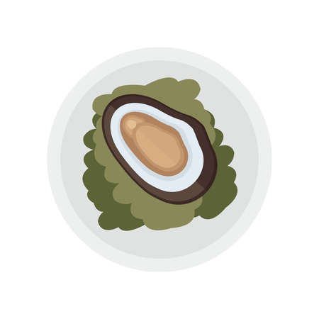 茶色の貝とサラダのベクトル  イラスト・ベクター素材