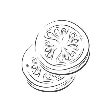 Tomato Sliced  vector drawing