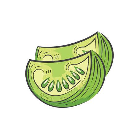 Geschnittene grüne Tomaten-Symbol und Essen Vektor Aquarell Standard-Bild - 75432462