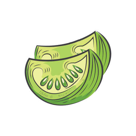 Sliced green tomato icon and food vector watercolor