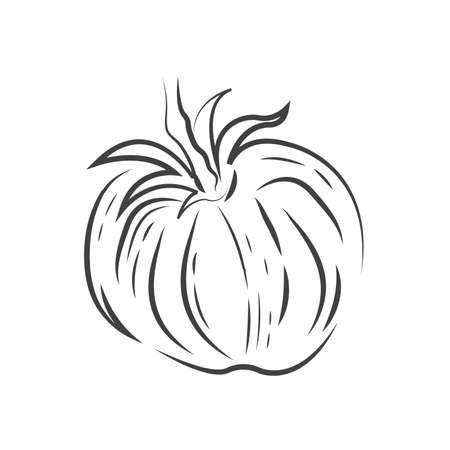 Ein Tomatensymbol Standard-Bild - 75706510