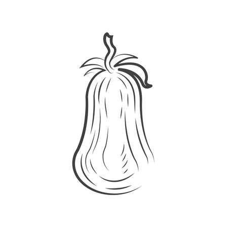 Tomato drawing icon design