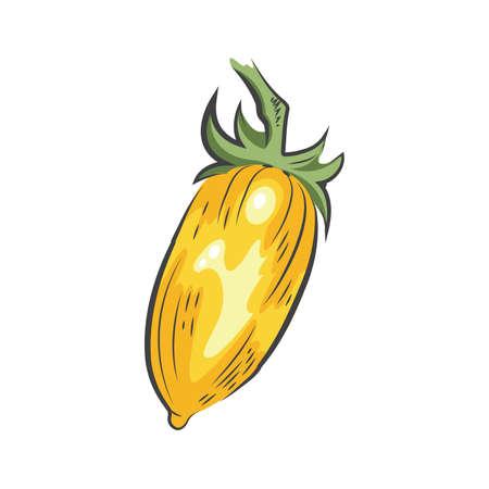yellow Tomato drawing icon