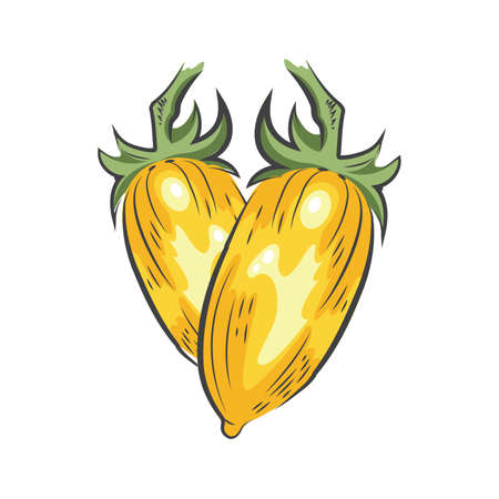 yellow Tomato drawing icon design Ilustrace
