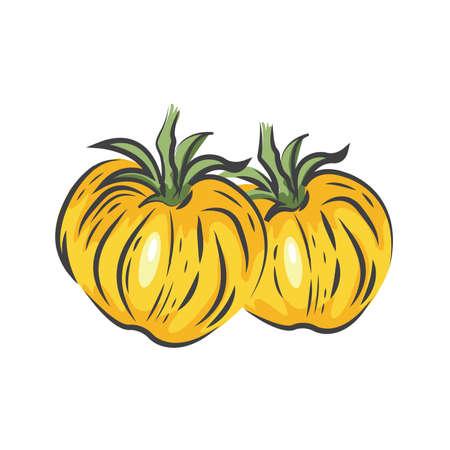 Gelb Zwei Tomaten Zeichnung Symbol Standard-Bild - 75706512