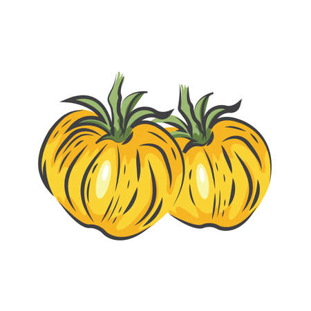 Yellow Two Tomato drawing icon