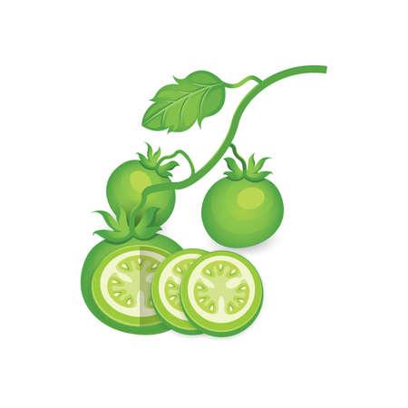 Set of Green Tomato 3D Icon