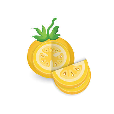 dissect Tomato Yellow Color icon
