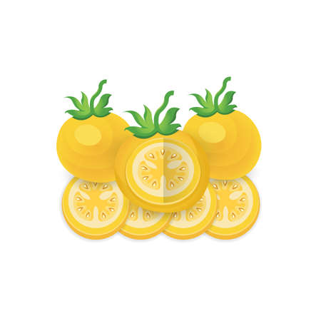 Tomato dissect  Yellow Color icon set