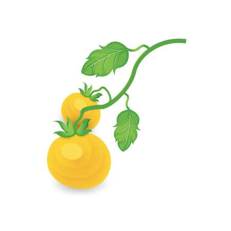 Tomato tree Yellow Color icon
