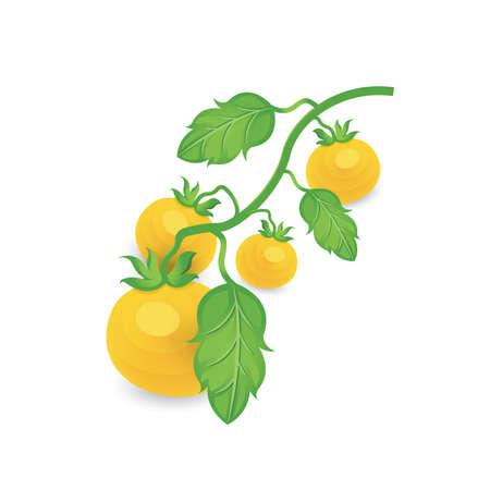 Glied Tomate gelbe Farbe icon Standard-Bild - 75431660