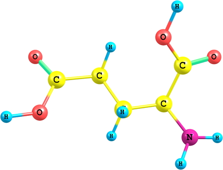 A model of Glutamic Acid, an amino acid. It has an important function in cell metabolism and neurotransmission. photo
